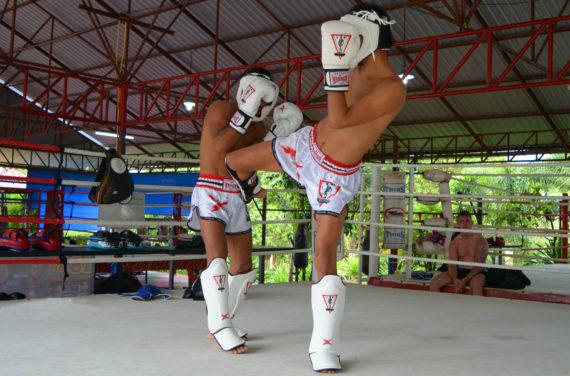 защита для ног spirit of a warrior, защита для ног из таиланда (9)