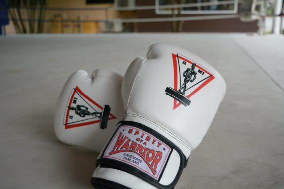 перчатки для спаррингов муай тай, купить украина, россия (6)